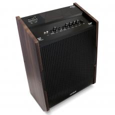 Caixa de Som Amplificada Multiuso Frahm - Enjoy Expert 200W