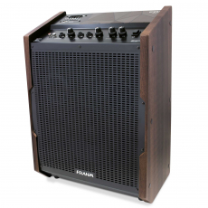 Caixa de Som Amplificada Multiuso Frahm - Enjoy Easy 150W